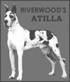 Riverwood's Atilla